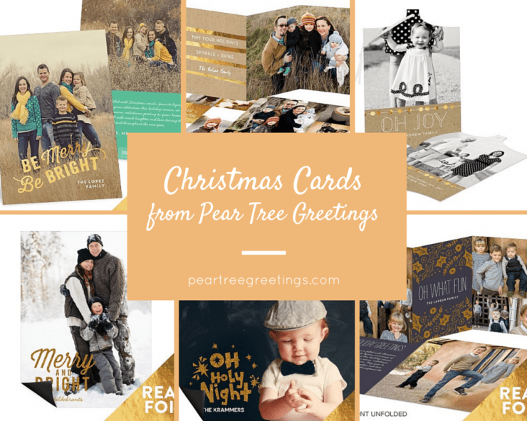 Christmas Cards | Help Us Choose!