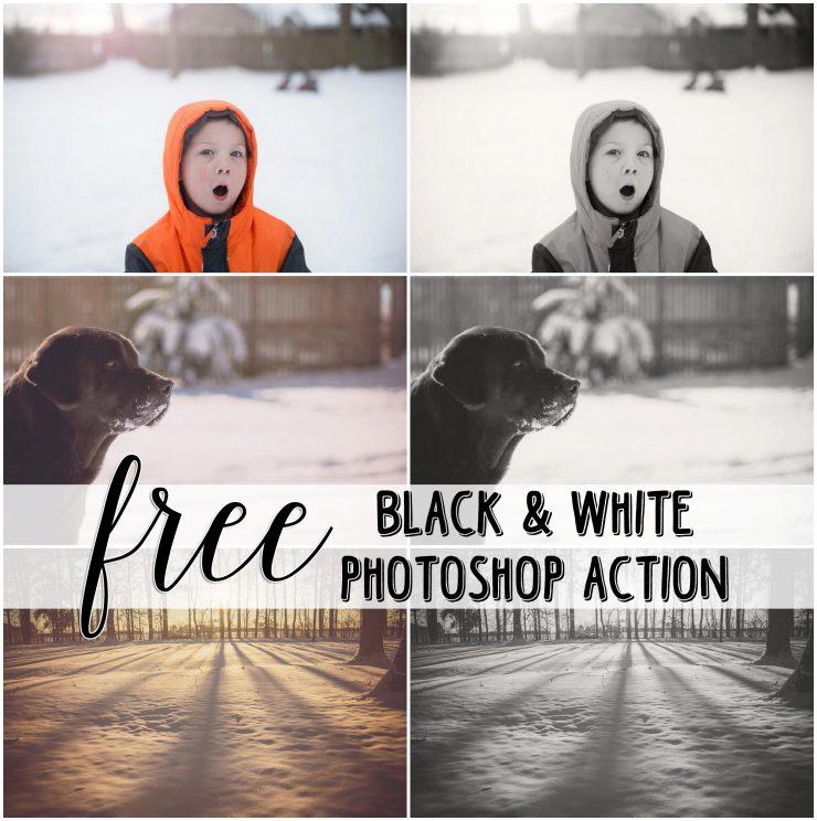 Free Black and White Photshop Action