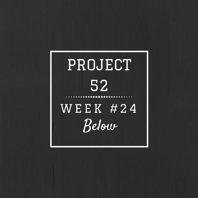 Project52week24