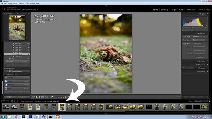 Photo Editing Tips using Adobe Creative Cloud