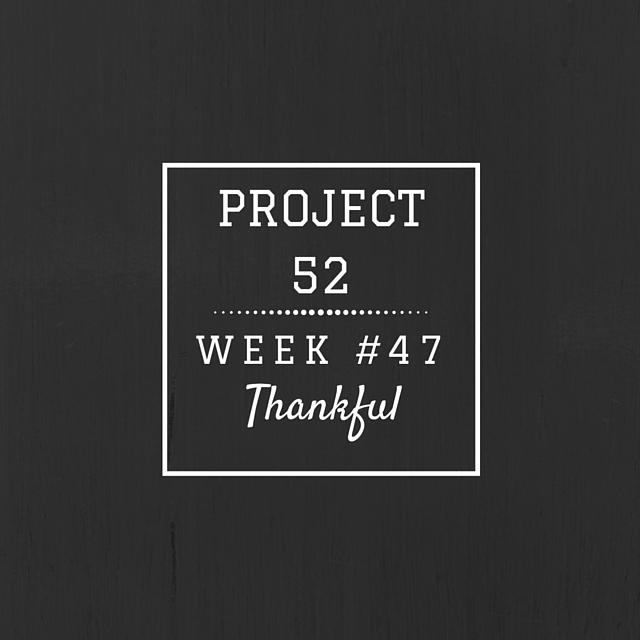 Project52week47