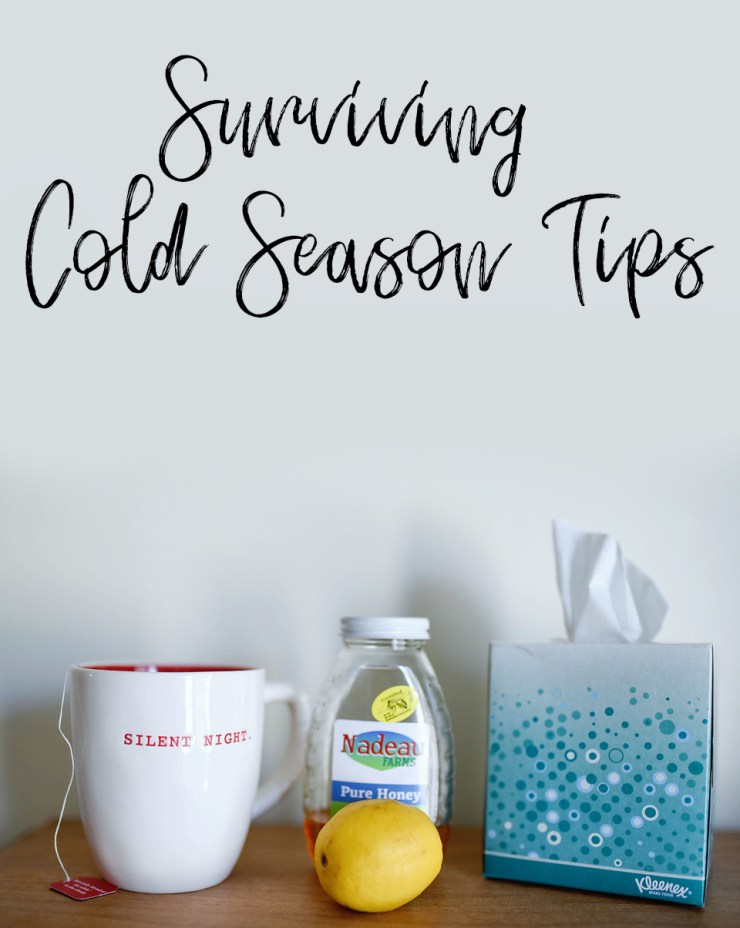 Surviving Cold Season Tips