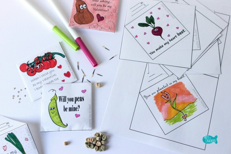 Seed Packet Valentines by Arts & Crackers