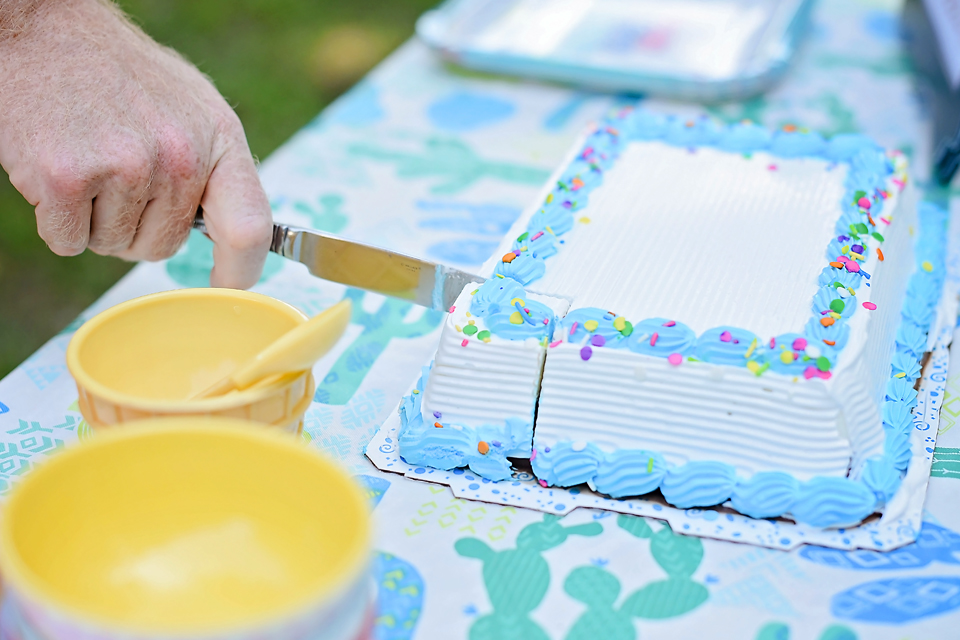 Carvel® Ice Cream Cake