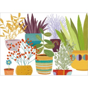Plants In Pots Design