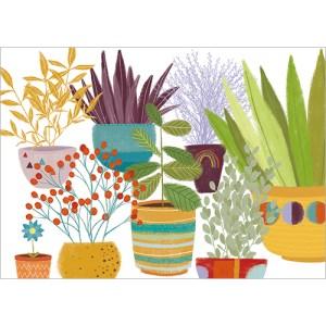 Plants In Pots Design