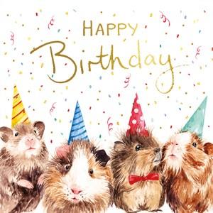 Guinea Pig Birthday Day Card Design
