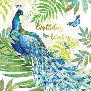 Peacock Card Design