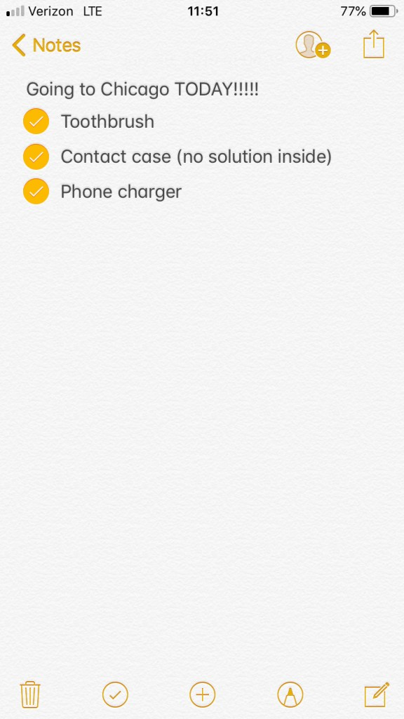 iPhone notes page with checklist