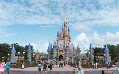 Disney World for Adults: A Visitor Guide