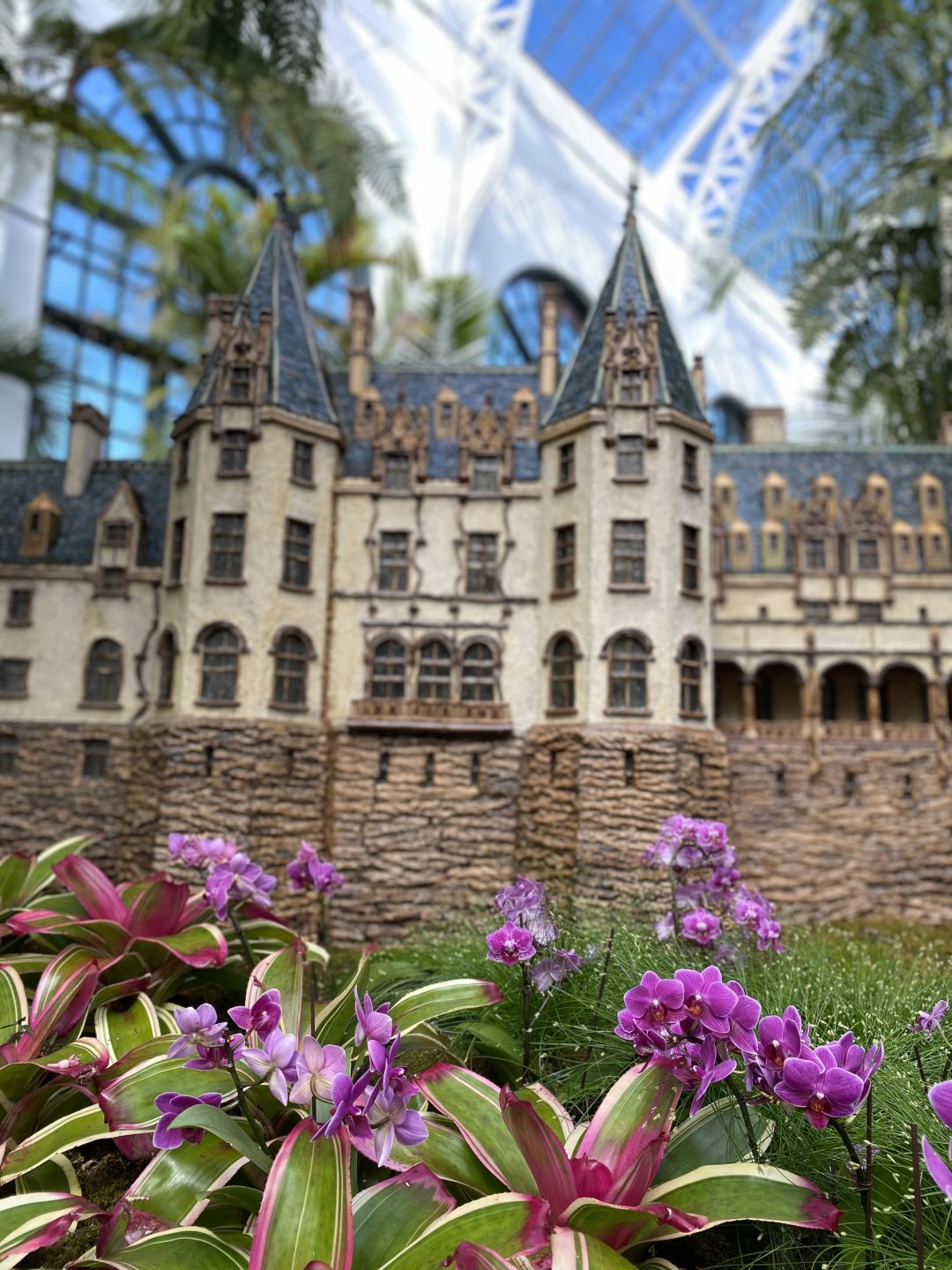 Purple flowers with Biltmore House replica in background