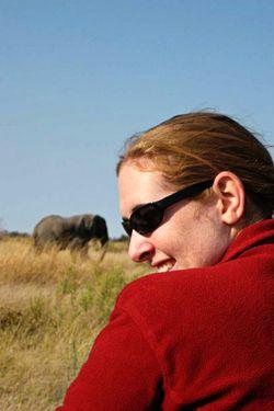 Elephant_edit