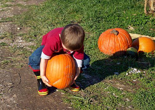 Pumpkinpatch 005_edit