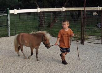 The littlest cowboy.