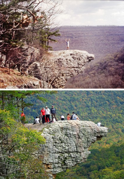 Tom and Girls and Whitaker Point