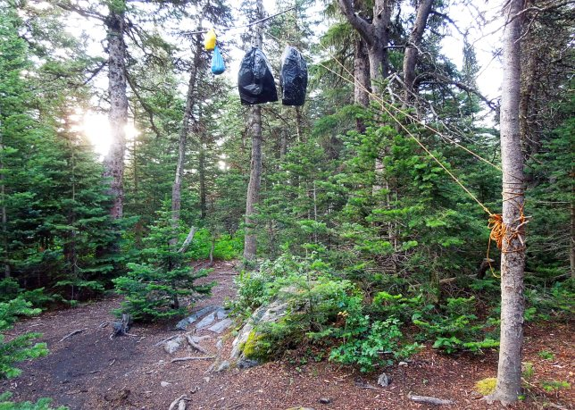Bear hang. Those bags contain our food and toiletries. Swinging that rope up over the bar is harder than it looks -- just trust me...