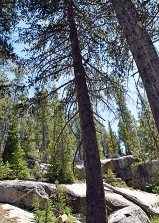 PCT_Yosemite_0154_edit_resize