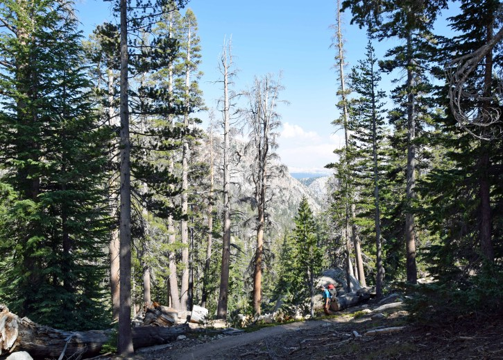 PCT_Yosemite_0173_edit_resize