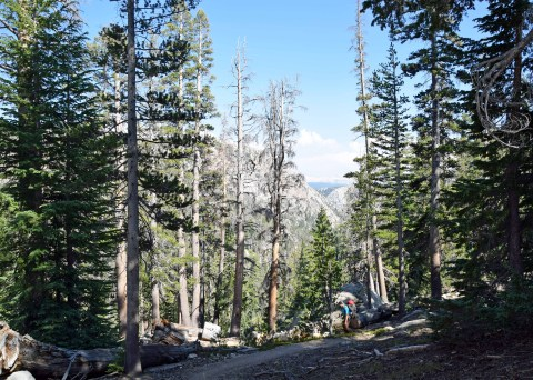 PCT_Yosemite_0173_edit_resize