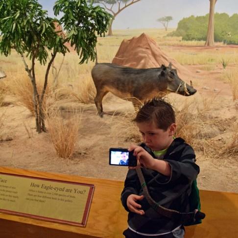 Selfie with a Razorback.