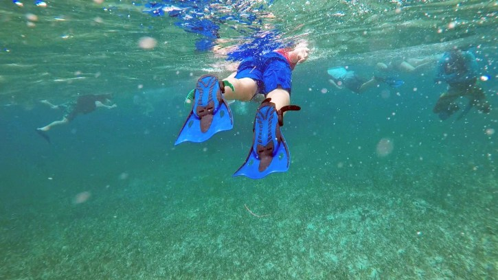 snorkel_colt fins_edit