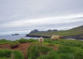 ICELAND_TUESDAY_DSC_0713_edit_resize