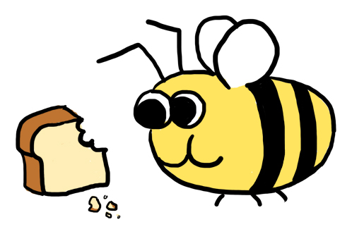 Honey Bee Q and A, Part 2 -  Queens, Bee Bread and Royal Jelly