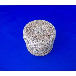 Cedar Bark Woven Around Jar by Maxine Edagrs