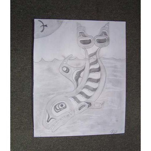 Original Drawing Killer Whale by David Jones
