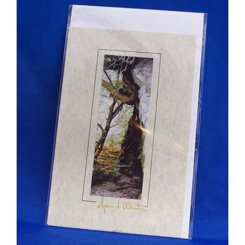 Card-Secret Passage by April White
