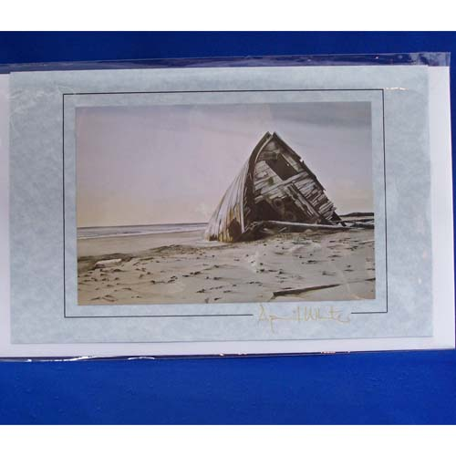 Card-The Pesuta by April White