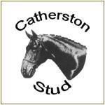 Sarah Sjoholm-Patience Team with Catherton Stud