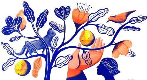 Sarah Wilkins illustration homepage