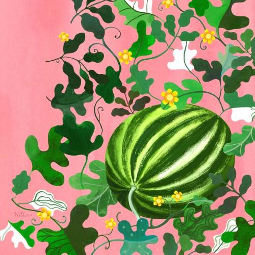Sarah_Wilkins-Angels_Watermelon