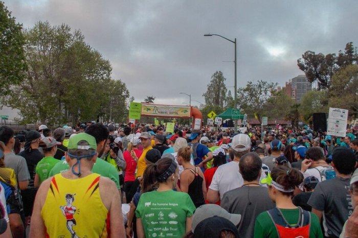 Running Excuses Last Race