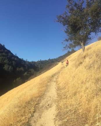 Runners doing the Drag-n-Fly Half Marathon