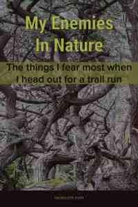 My enemies in nature