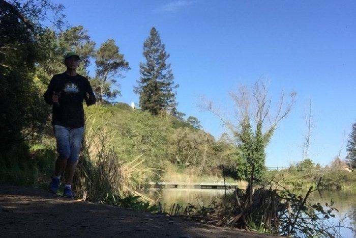 American River 50 Training Recap week 8