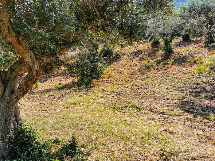 Monte-Gennaro-sentiero