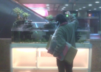 Tayvan Tren Istasyonu