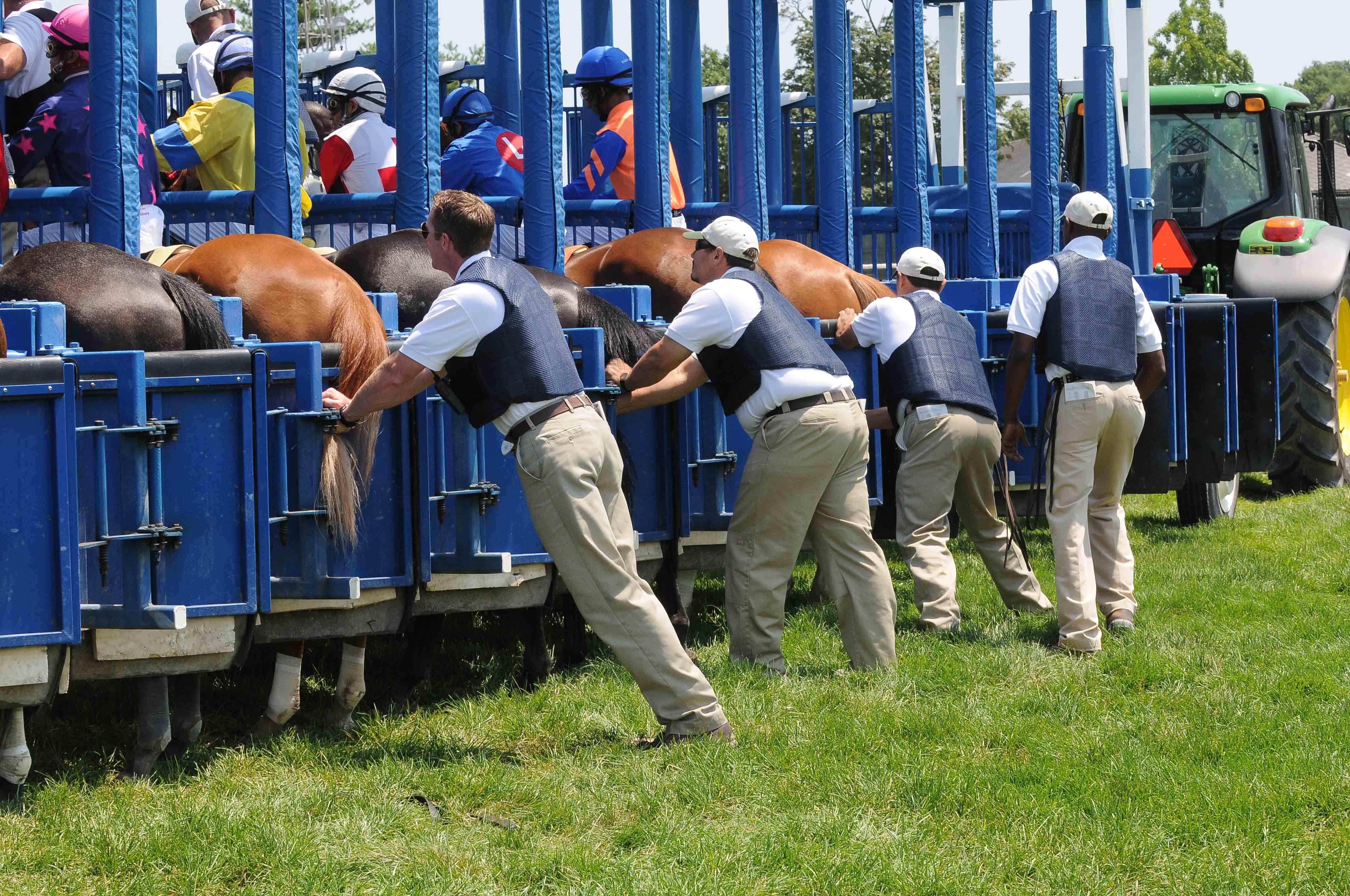 Image result for race horses starting gate