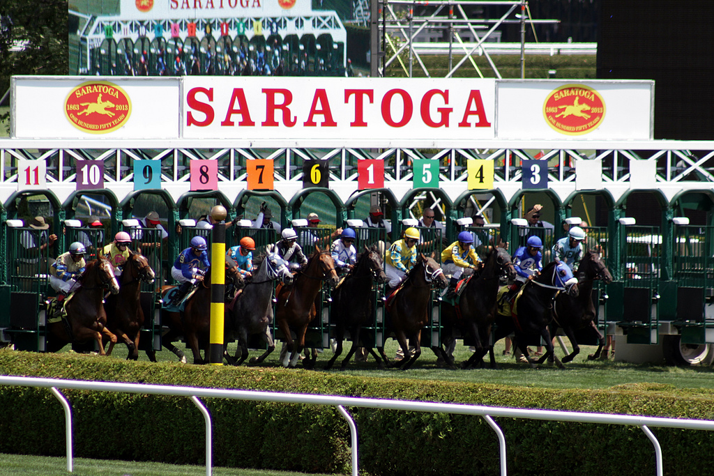 Register Now For NYRAs College  Alumni Day Handicapping Tournament at Saratoga Race Course