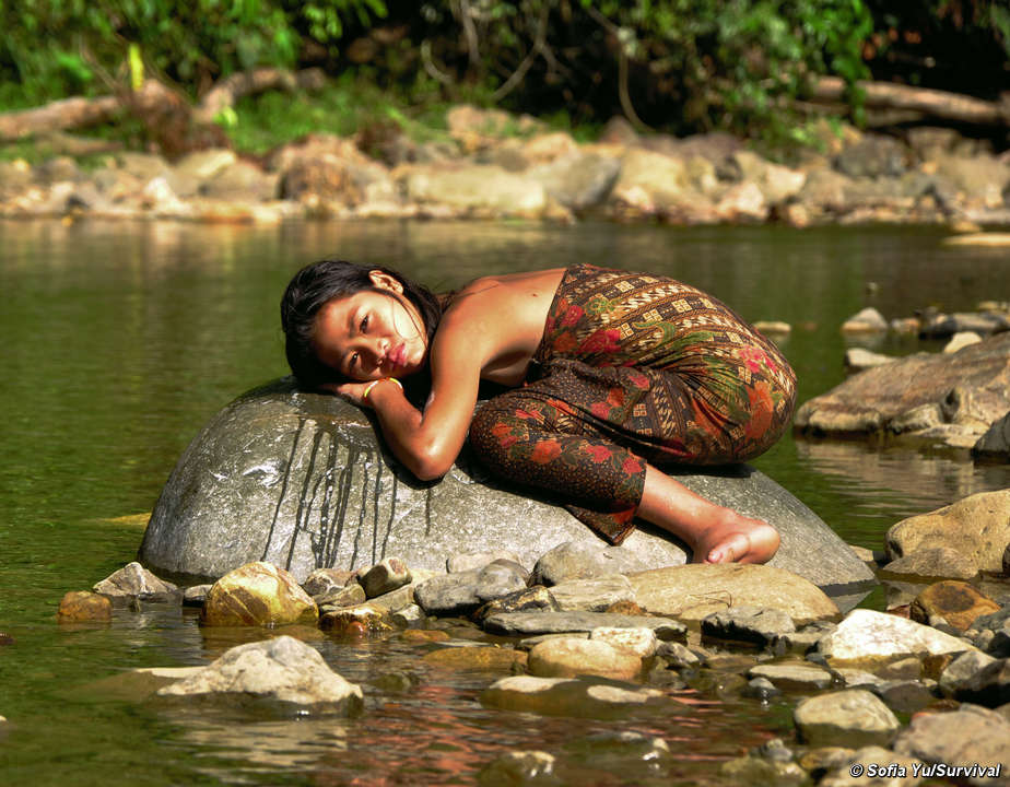 The Penan protested the destruction of their river in vain.