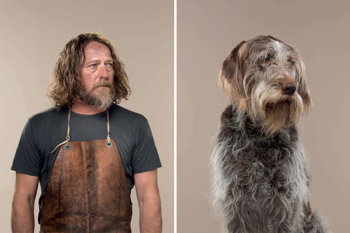 dogs with their owners