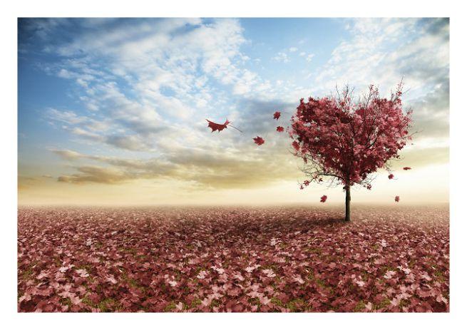 Il tempo in cui le poesie si imparavano a memoria (di Giampaolo Cassitta)
