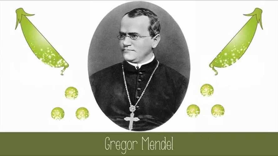 8.2.1865, il discorso di Mendel. (Luca Ronchi)