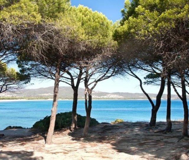 Hotels Resorts In Sardinia Hotel Village Fior Di Sardegna In Posada Holidays Sardinia