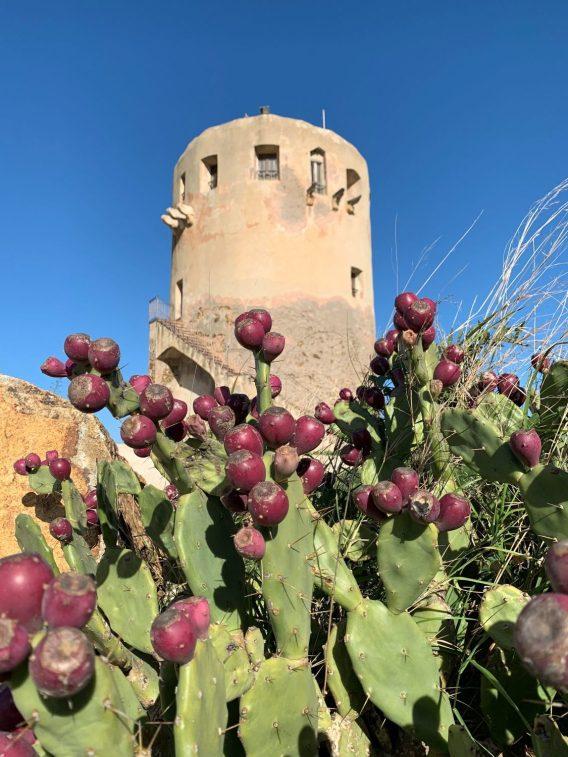 Torre di Porto Corallo in Villaputzu