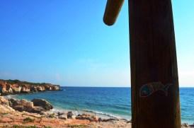 Sardine of Marseille au cap lévèque