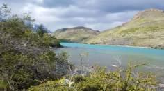 Sardine Of Marseille en Patagonie